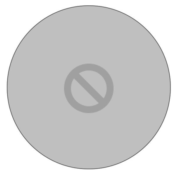 Перечеркнутый круг при загрузке MacBook